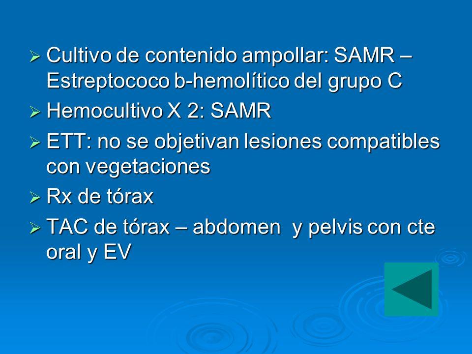 Cultivo de contenido ampollar: SAMR – Estreptococo b-hemolítico del grupo C Cultivo de contenido ampollar: SAMR – Estreptococo b-hemolítico del grupo