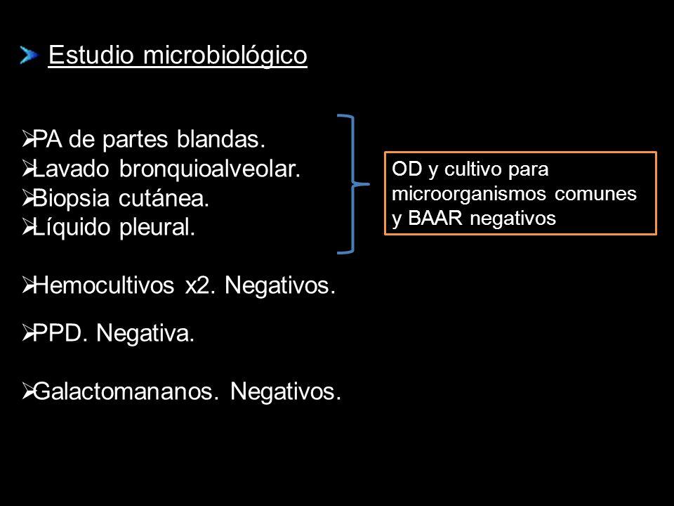 Estudio microbiológico Estudio microbiológico PA de partes blandas. Lavado bronquioalveolar. Biopsia cutánea. Líquido pleural. Hemocultivos x2. Negati