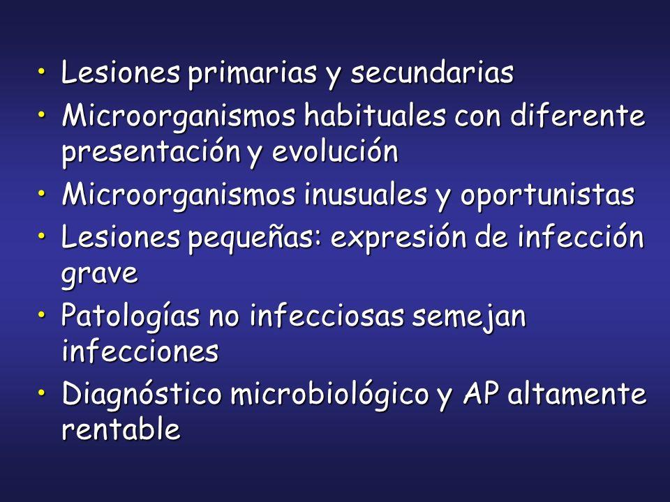 Lesiones primarias y secundariasLesiones primarias y secundarias Microorganismos habituales con diferente presentación y evoluciónMicroorganismos habi