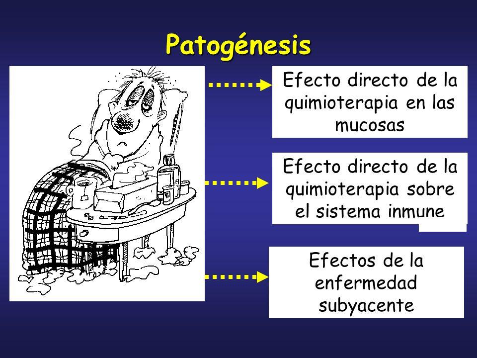 Patogénesis Efecto directo de la quimioterapia en las mucosas Efecto directo de la quimioterapia sobre el sistema inmune Efectos de la enfermedad suby