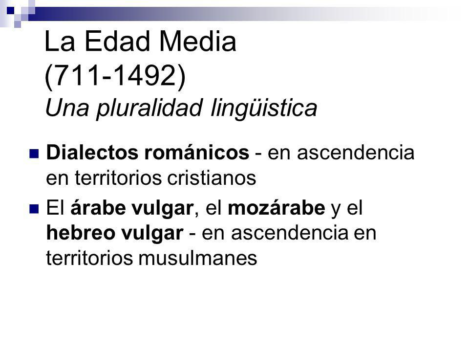 La Edad Media (711-1492) Una pluralidad lingüistica Dialectos románicos - en ascendencia en territorios cristianos El árabe vulgar, el mozárabe y el h