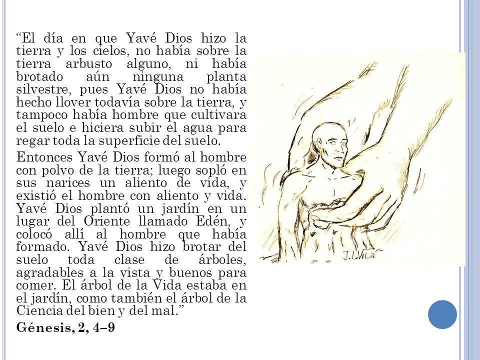 El día en que Yavé Dios hizo la tierra y los cielos, no había sobre la tierra arbusto alguno, ni había brotado aún ninguna planta silvestre, pues Yavé