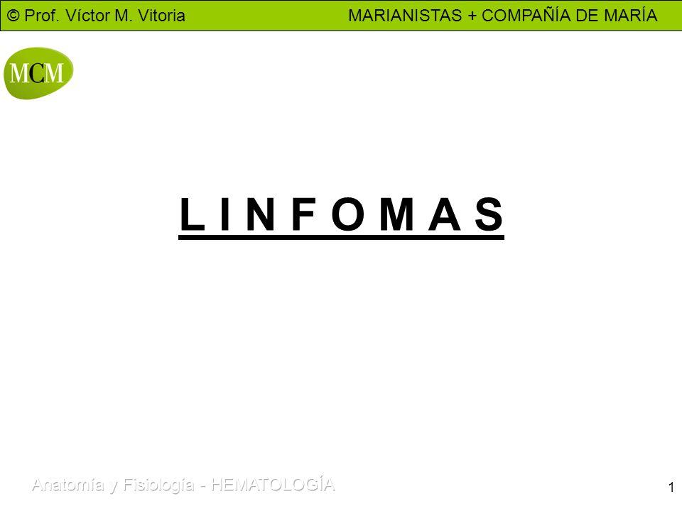 © Prof. Víctor M. Vitoria MARIANISTAS + COMPAÑÍA DE MARÍA 1 L I N F O M A S