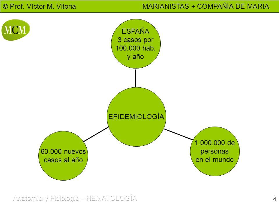 © Prof. Víctor M. Vitoria MARIANISTAS + COMPAÑÍA DE MARÍA 4 EPIDEMIOLOGÍA 60.000 nuevos casos al año ESPAÑA 3 casos por 100.000 hab. y año 1.000.000 d
