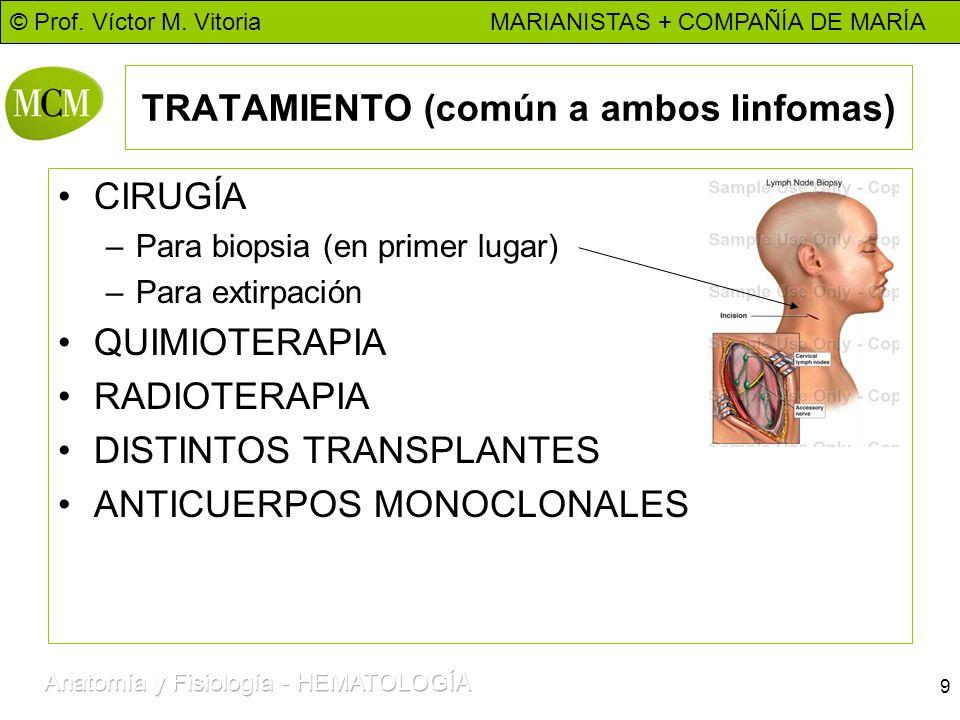 © Prof. Víctor M. Vitoria MARIANISTAS + COMPAÑÍA DE MARÍA 9 TRATAMIENTO (común a ambos linfomas) CIRUGÍA –Para biopsia (en primer lugar) –Para extirpa
