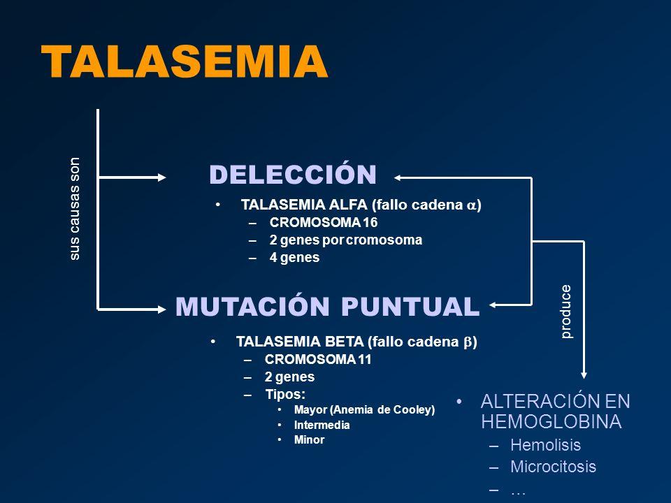 TALASEMIA Talasemia mayor –Grave –Mutación en los dos cromosomas.