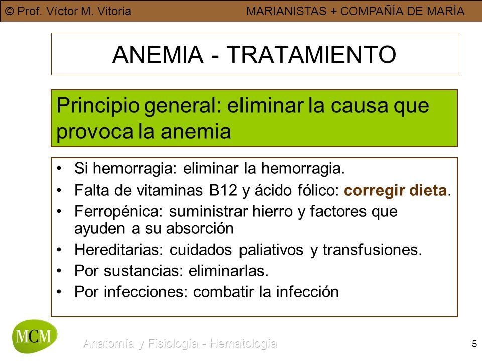 © Prof. Víctor M. VitoriaMARIANISTAS + COMPAÑÍA DE MARÍA 5 ANEMIA - TRATAMIENTO Principio general: eliminar la causa que provoca la anemia Si hemorrag