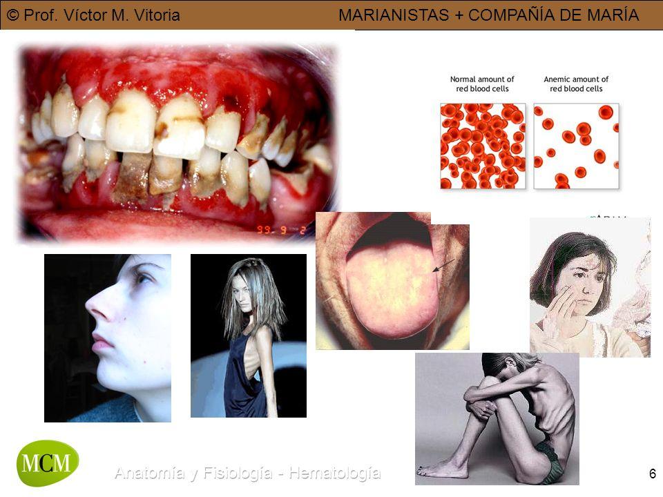© Prof. Víctor M. VitoriaMARIANISTAS + COMPAÑÍA DE MARÍA 6