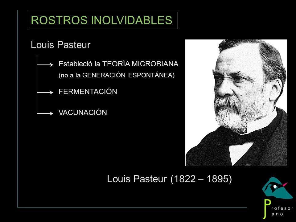 ROSTROS INOLVIDABLES Louis Pasteur Estableció la TEORÍA MICROBIANA (no a la GENERACIÓN ESPONTÁNEA) FERMENTACIÓN VACUNACIÓN Louis Pasteur (1822 – 1895)