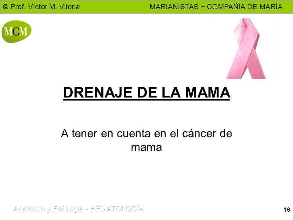 © Prof. Víctor M. Vitoria MARIANISTAS + COMPAÑÍA DE MARÍA 16 DRENAJE DE LA MAMA A tener en cuenta en el cáncer de mama
