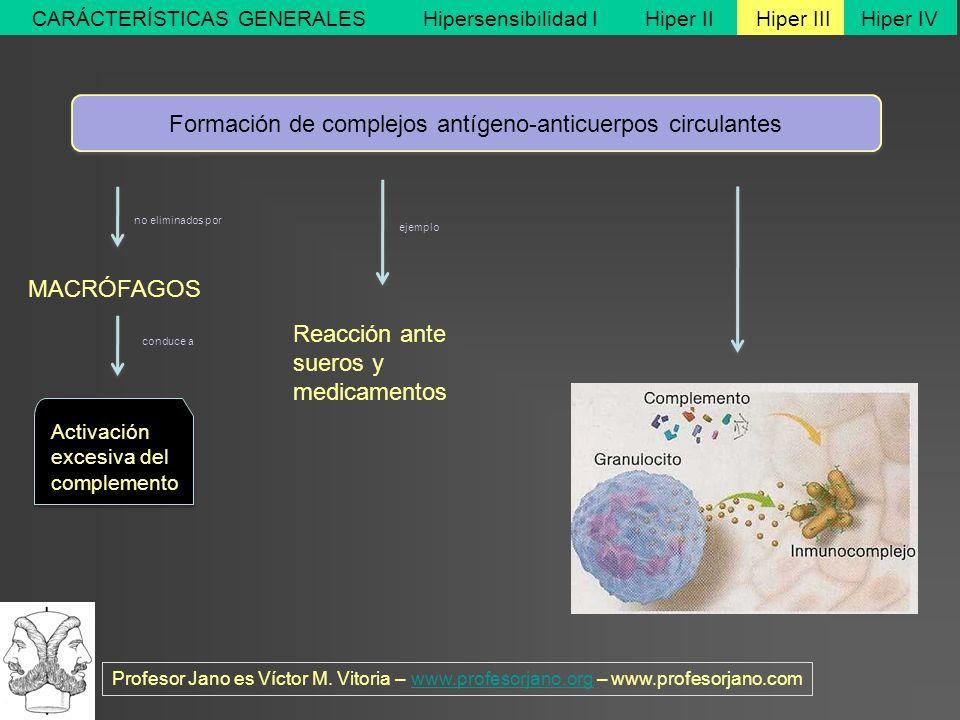 Profesor Jano es Víctor M. Vitoria – www.profesorjano.org – www.profesorjano.comwww.profesorjano.org Hipersensibilidad IHiper IIHiper IIIHiper IVCARÁC