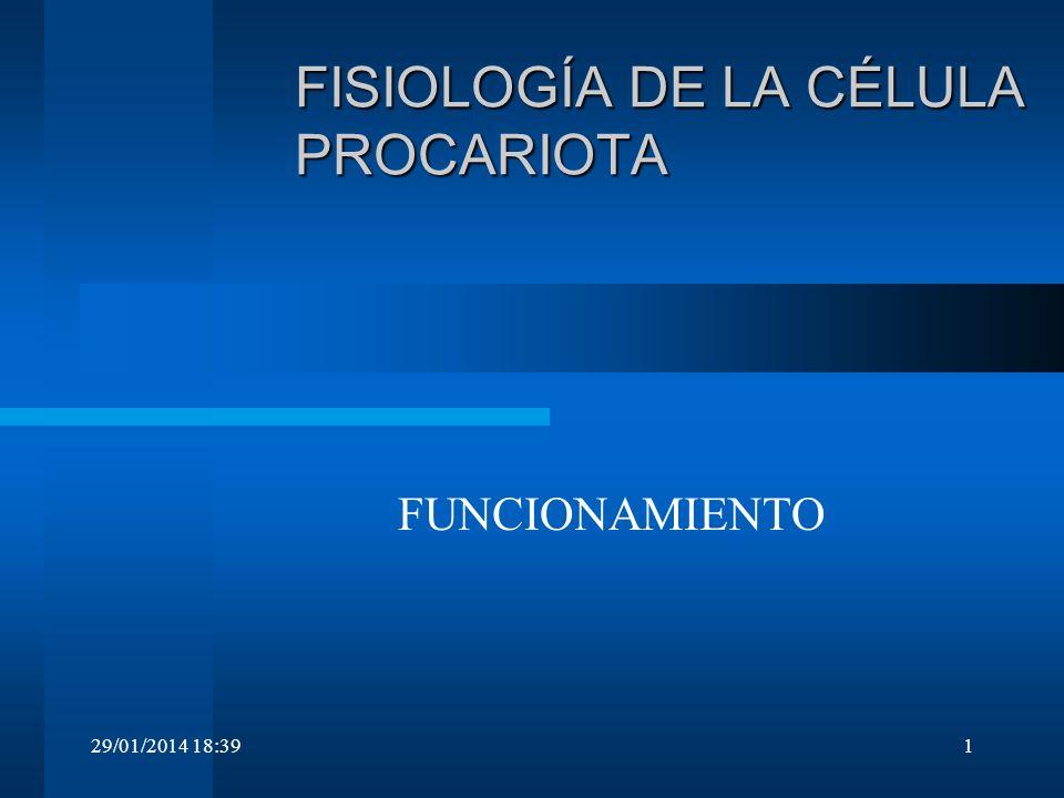 29/01/2014 18:411 FISIOLOGÍA DE LA CÉLULA PROCARIOTA FUNCIONAMIENTO