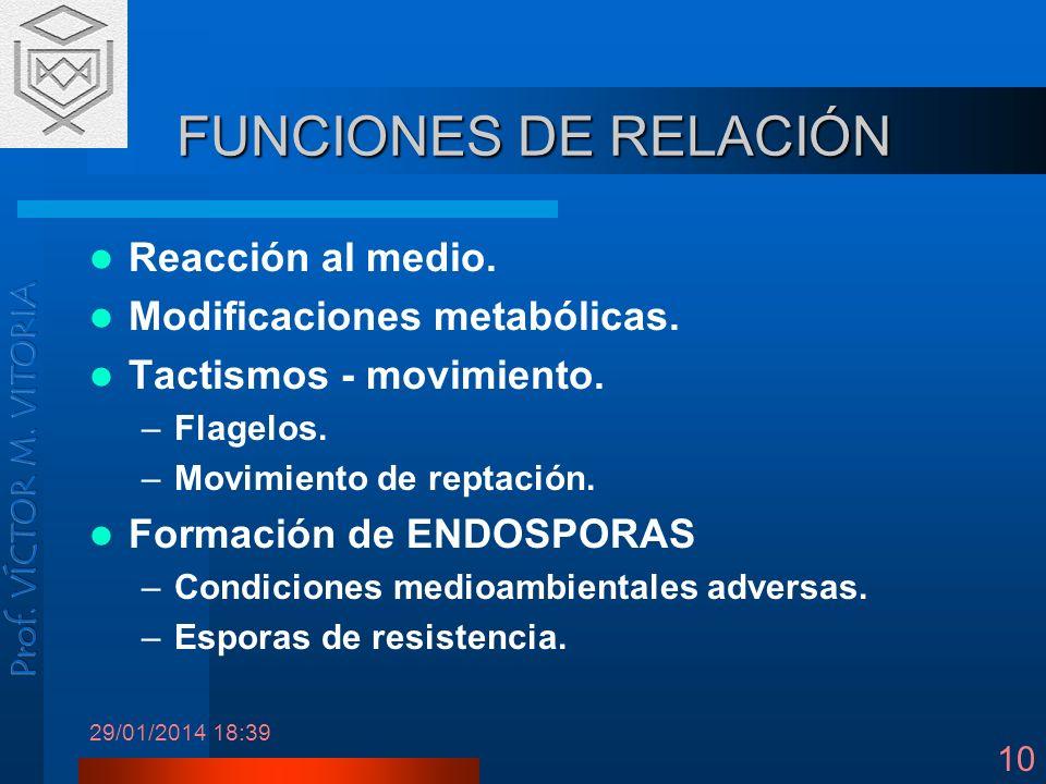29/01/2014 18:41 10 FUNCIONES DE RELACIÓN Reacción al medio. Modificaciones metabólicas. Tactismos - movimiento. –Flagelos. –Movimiento de reptación.