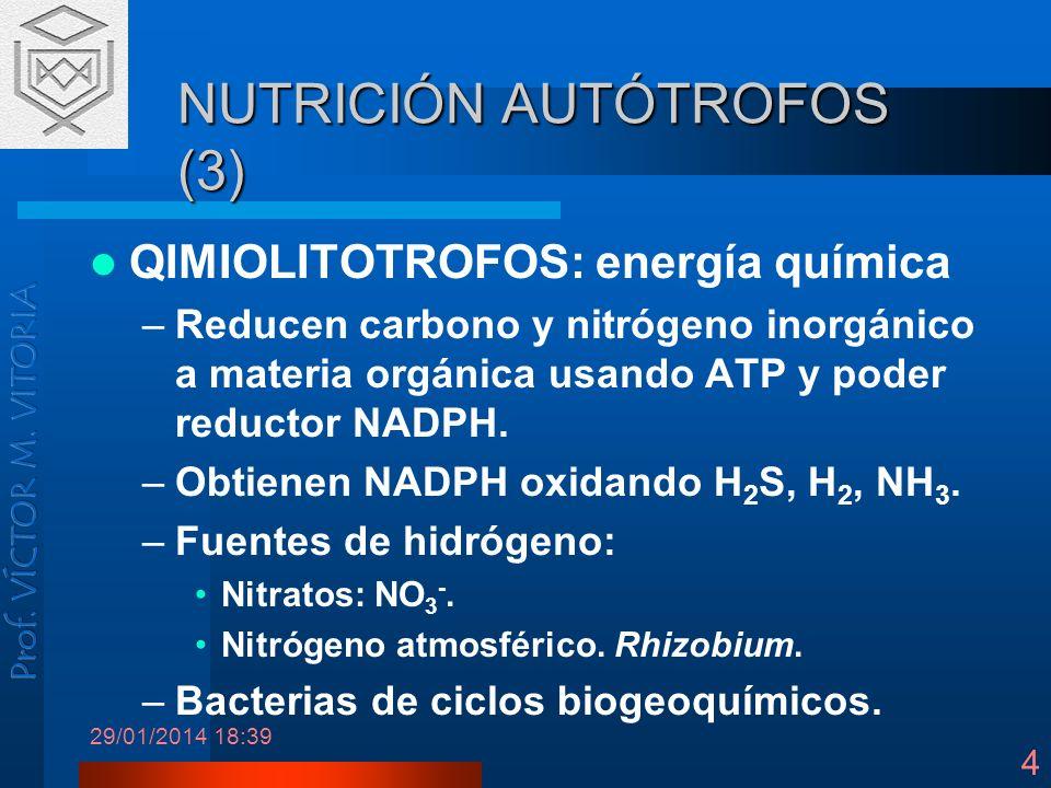 29/01/2014 18:41 4 NUTRICIÓN AUTÓTROFOS (3) QIMIOLITOTROFOS: energía química –Reducen carbono y nitrógeno inorgánico a materia orgánica usando ATP y p