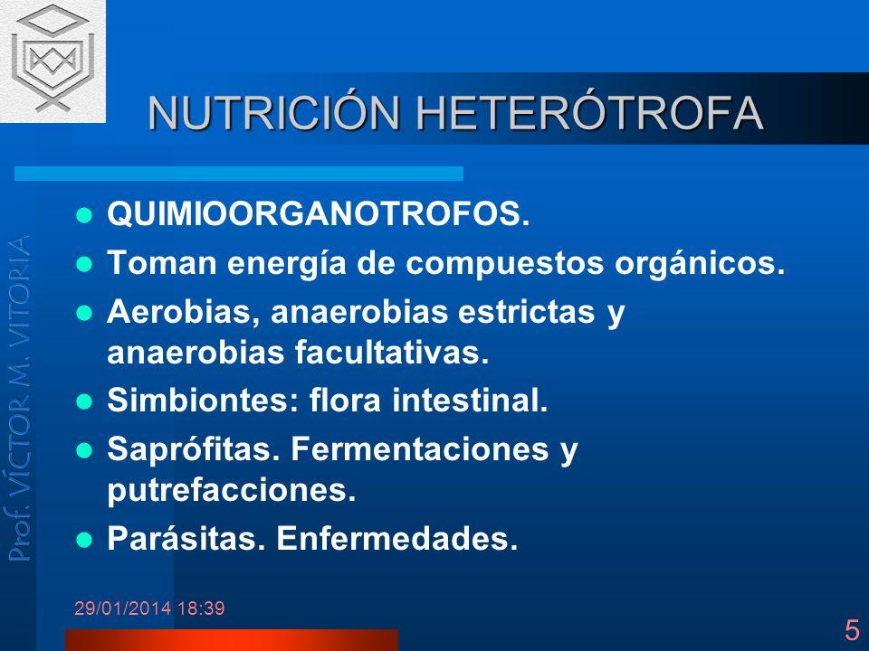 29/01/2014 18:41 5 NUTRICIÓN HETERÓTROFA QUIMIOORGANOTROFOS. Toman energía de compuestos orgánicos. Aerobias, anaerobias estrictas y anaerobias facult