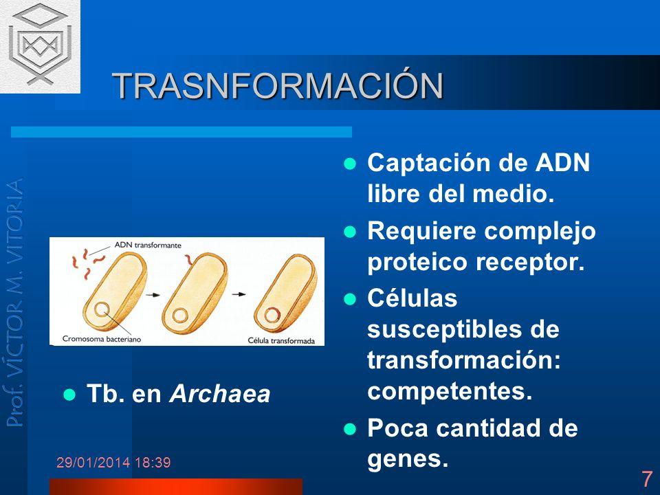 29/01/2014 18:41 7 TRASNFORMACIÓN Captación de ADN libre del medio. Requiere complejo proteico receptor. Células susceptibles de transformación: compe