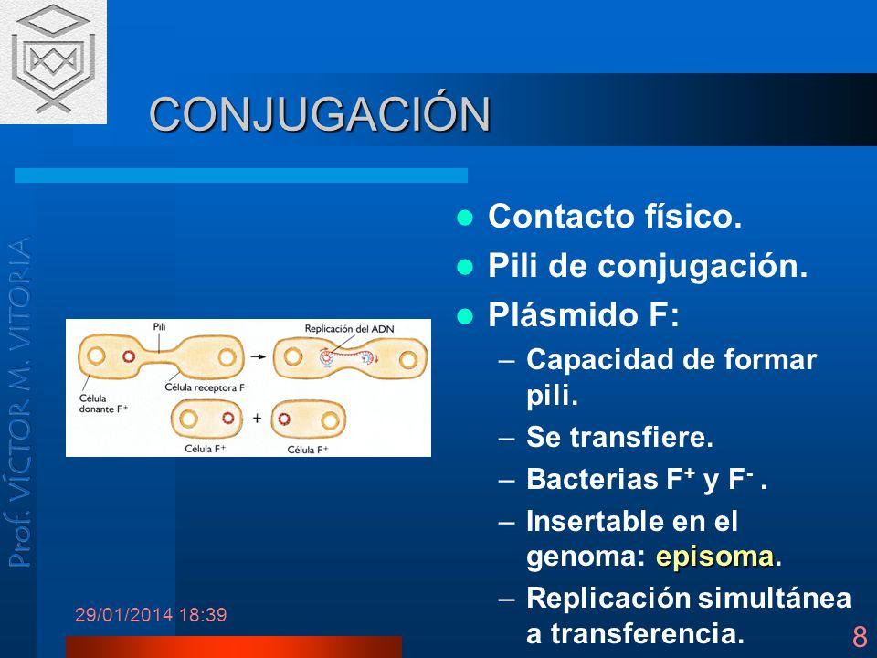 29/01/2014 18:41 8 CONJUGACIÓN Contacto físico. Pili de conjugación. Plásmido F: –Capacidad de formar pili. –Se transfiere. –Bacterias F + y F -. epis
