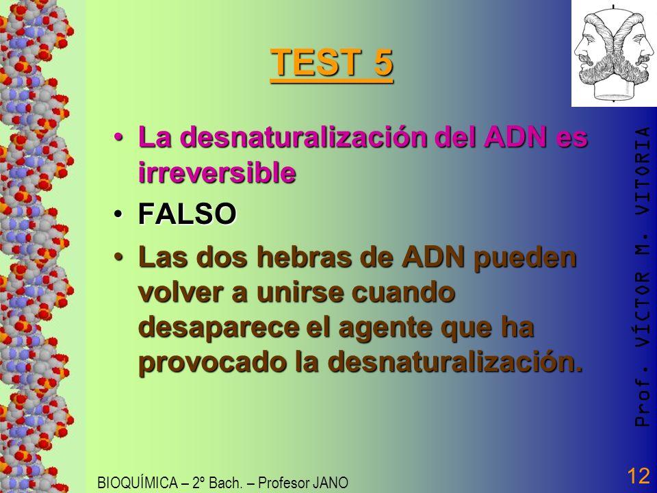 Prof. VÍCTOR M. VITORIA BIOQUÍMICA – 2º Bach. – Profesor JANO 12 TEST 5 La desnaturalización del ADN es irreversibleLa desnaturalización del ADN es ir