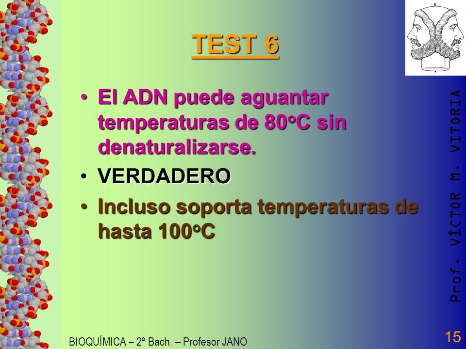 Prof. VÍCTOR M. VITORIA BIOQUÍMICA – 2º Bach. – Profesor JANO 15 TEST 6 El ADN puede aguantar temperaturas de 80 o C sin denaturalizarse.El ADN puede
