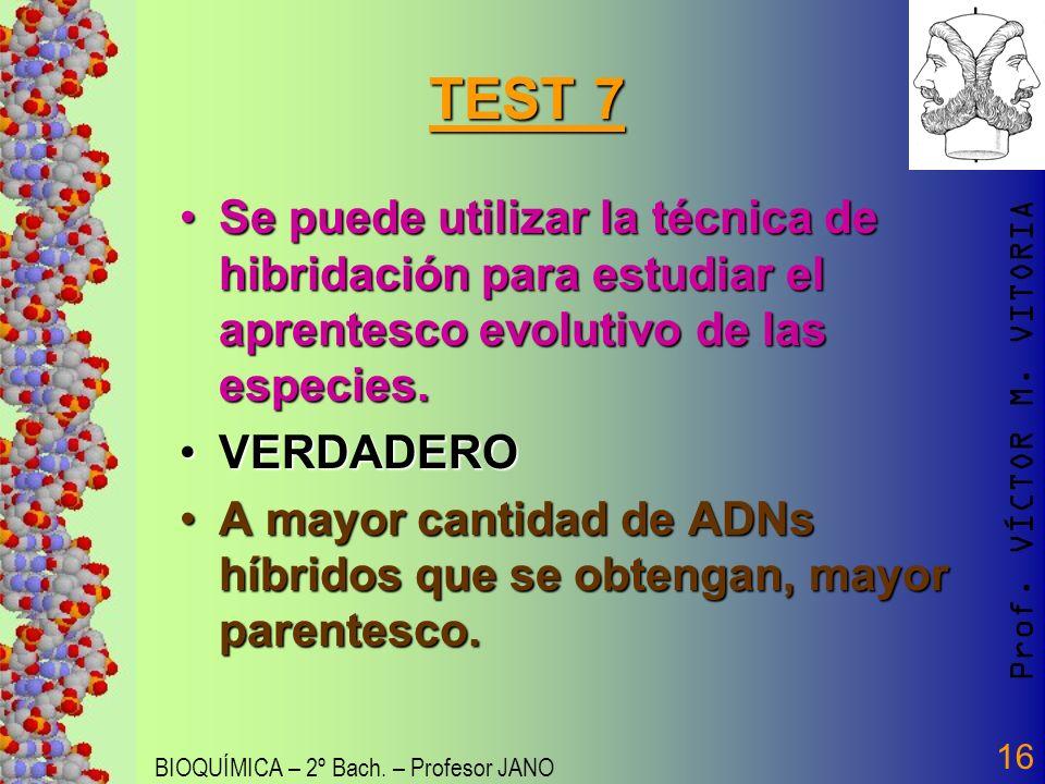 Prof. VÍCTOR M. VITORIA BIOQUÍMICA – 2º Bach. – Profesor JANO 16 TEST 7 Se puede utilizar la técnica de hibridación para estudiar el aprentesco evolut