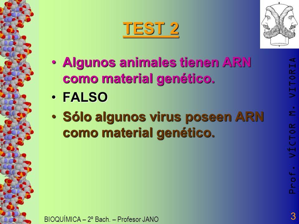 Prof. VÍCTOR M. VITORIA BIOQUÍMICA – 2º Bach. – Profesor JANO 3 TEST 2 Algunos animales tienen ARN como material genético.Algunos animales tienen ARN