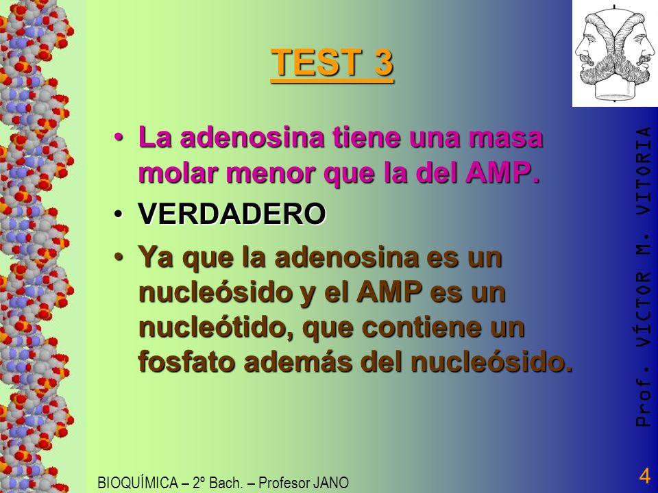 Prof. VÍCTOR M. VITORIA BIOQUÍMICA – 2º Bach. – Profesor JANO 4 TEST 3 La adenosina tiene una masa molar menor que la del AMP.La adenosina tiene una m