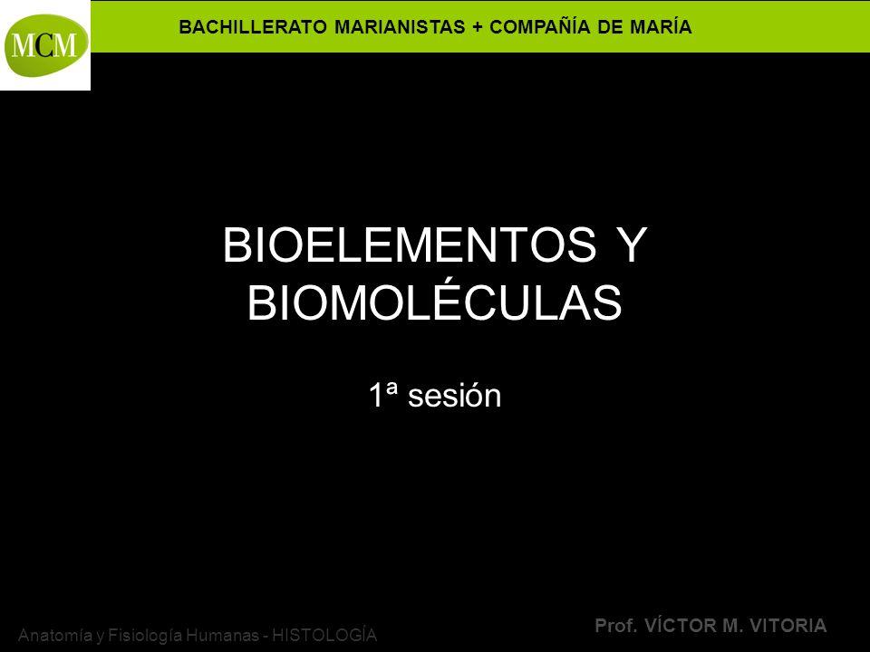 BACHILLERATO MARIANISTAS + COMPAÑÍA DE MARÍA Prof. VÍCTOR M. VITORIA Anatomía y Fisiología Humanas - HISTOLOGÍA BIOELEMENTOS Y BIOMOLÉCULAS 1ª sesión
