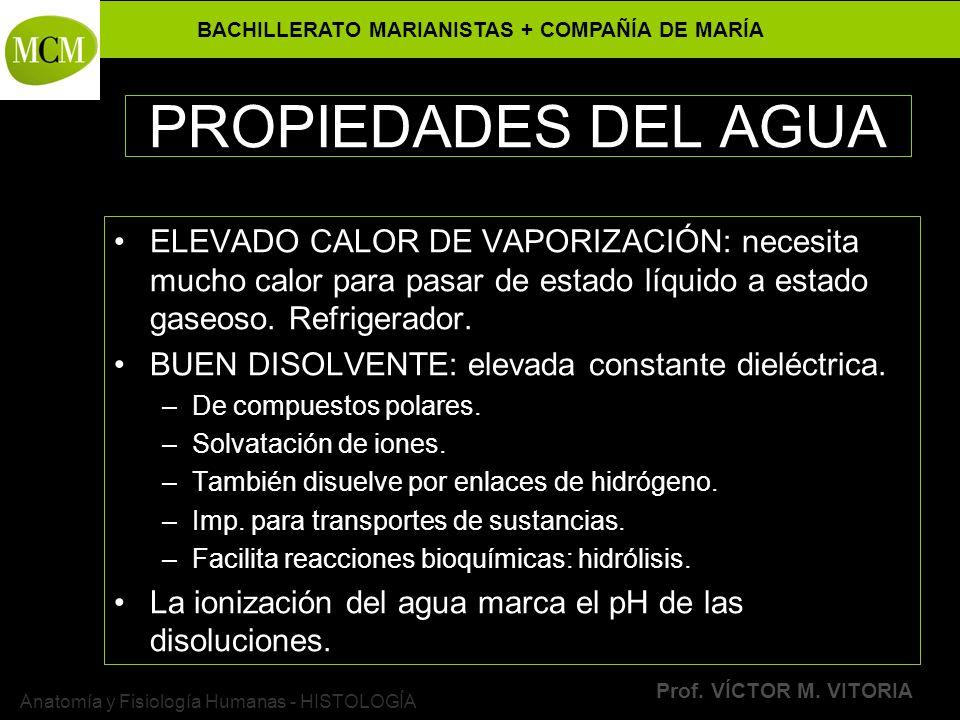 BACHILLERATO MARIANISTAS + COMPAÑÍA DE MARÍA Prof. VÍCTOR M. VITORIA Anatomía y Fisiología Humanas - HISTOLOGÍA PROPIEDADES DEL AGUA ELEVADO CALOR DE
