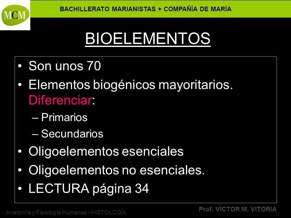 BACHILLERATO MARIANISTAS + COMPAÑÍA DE MARÍA Prof. VÍCTOR M. VITORIA Anatomía y Fisiología Humanas - HISTOLOGÍA BIOELEMENTOS Son unos 70 Elementos bio