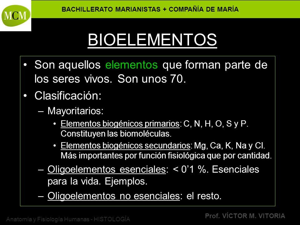 BACHILLERATO MARIANISTAS + COMPAÑÍA DE MARÍA Prof. VÍCTOR M. VITORIA Anatomía y Fisiología Humanas - HISTOLOGÍA BIOELEMENTOS Son aquellos elementos qu