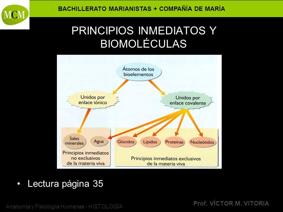 BACHILLERATO MARIANISTAS + COMPAÑÍA DE MARÍA Prof. VÍCTOR M. VITORIA Anatomía y Fisiología Humanas - HISTOLOGÍA PRINCIPIOS INMEDIATOS Y BIOMOLÉCULAS L