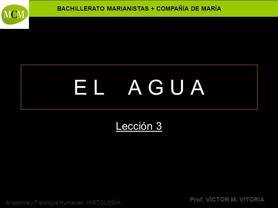 BACHILLERATO MARIANISTAS + COMPAÑÍA DE MARÍA Prof. VÍCTOR M. VITORIA Anatomía y Fisiología Humanas - HISTOLOGÍA E L A G U A Lección 3