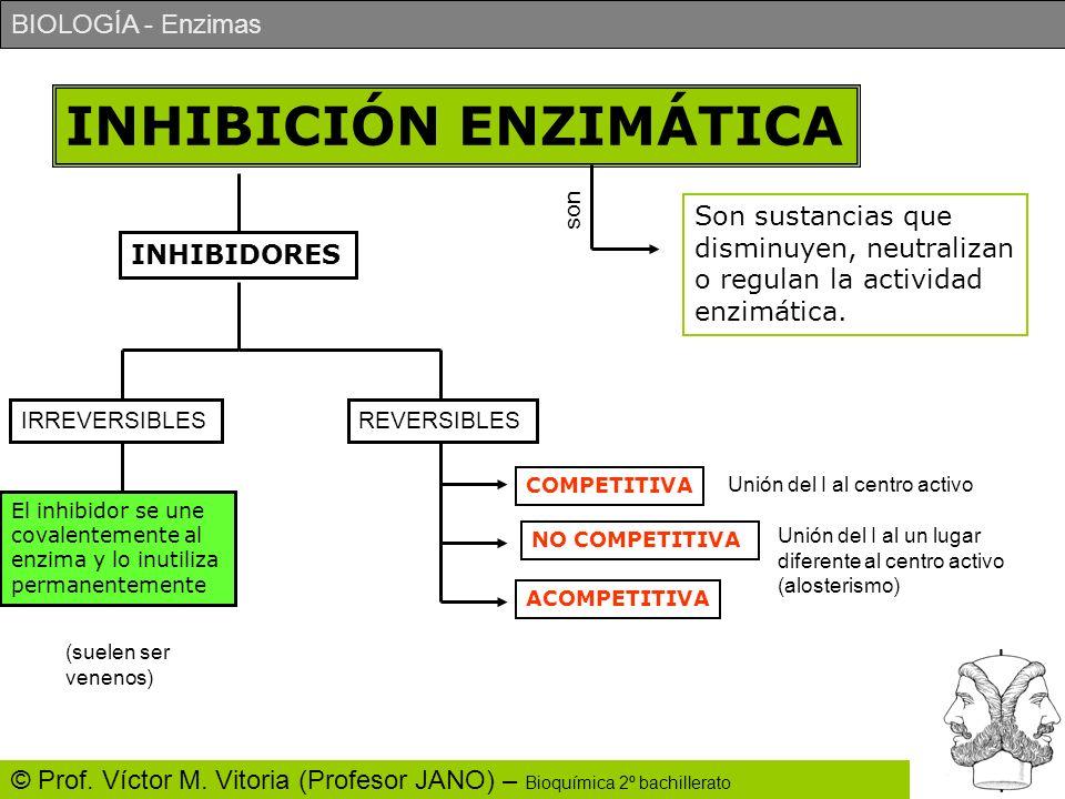 BIOLOGÍA - Enzimas © Prof. Víctor M. Vitoria (Profesor JANO) – Bioquímica 2º bachillerato INHIBICIÓN ENZIMÁTICA Son sustancias que disminuyen, neutral