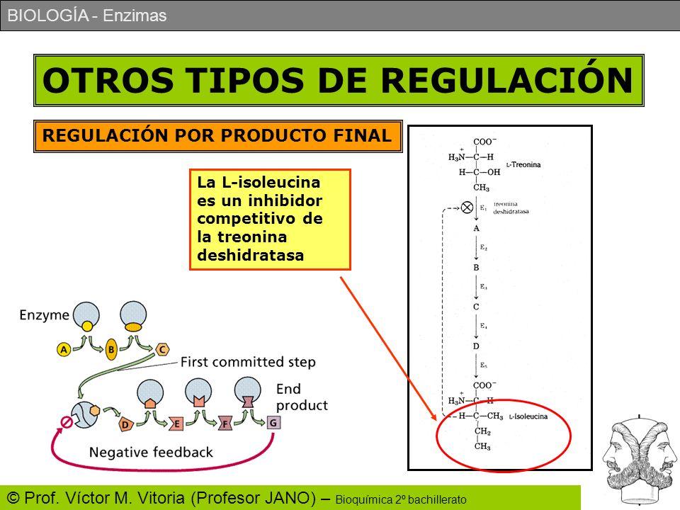 BIOLOGÍA - Enzimas © Prof. Víctor M. Vitoria (Profesor JANO) – Bioquímica 2º bachillerato OTROS TIPOS DE REGULACIÓN REGULACIÓN POR PRODUCTO FINAL La L