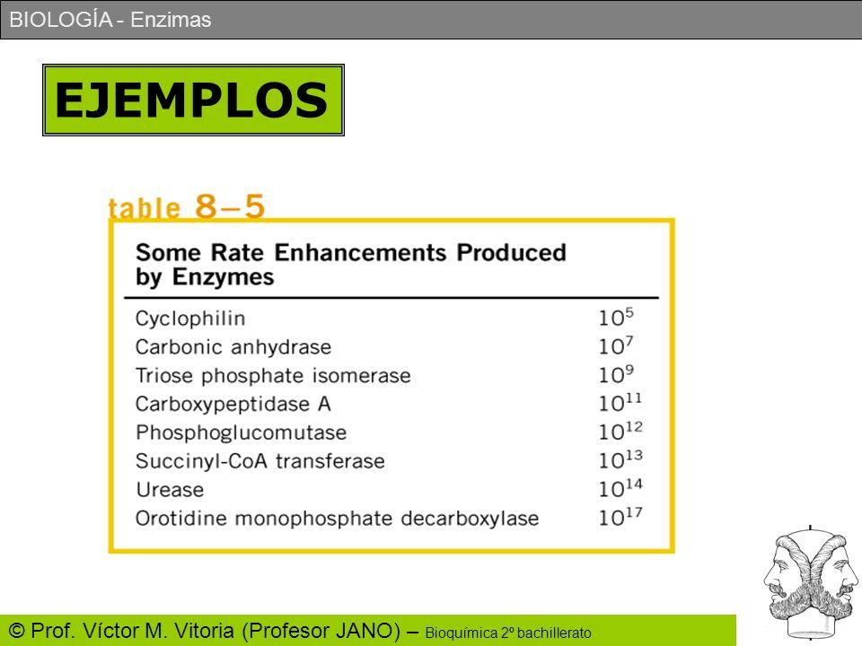 BIOLOGÍA - Enzimas © Prof. Víctor M. Vitoria (Profesor JANO) – Bioquímica 2º bachillerato EJEMPLOS