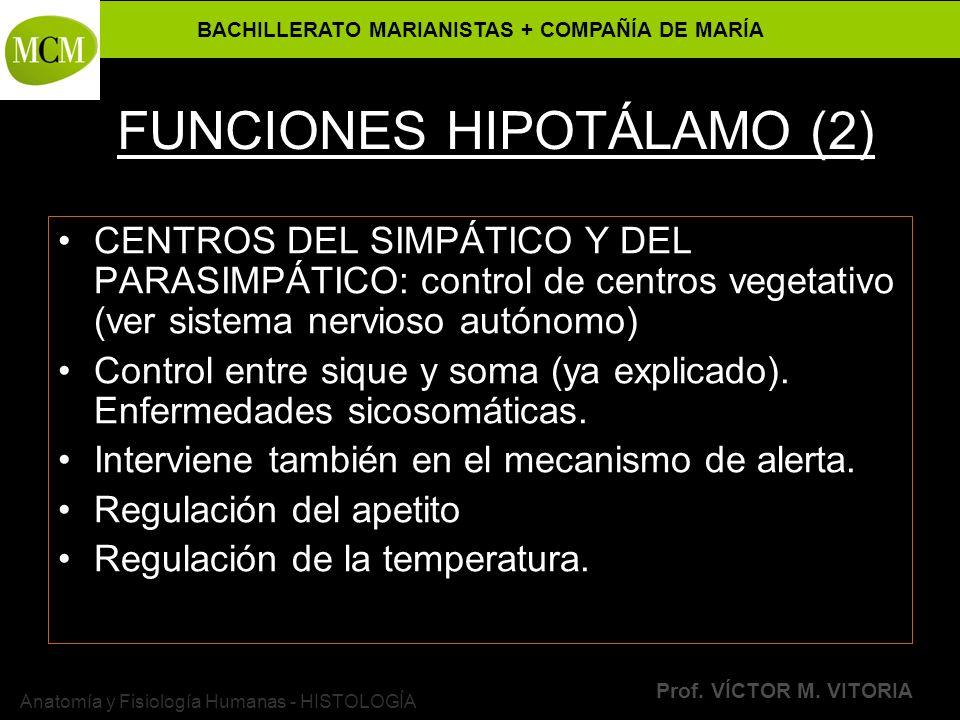 BACHILLERATO MARIANISTAS + COMPAÑÍA DE MARÍA Prof. VÍCTOR M. VITORIA Anatomía y Fisiología Humanas - HISTOLOGÍA FUNCIONES HIPOTÁLAMO (2) CENTROS DEL S