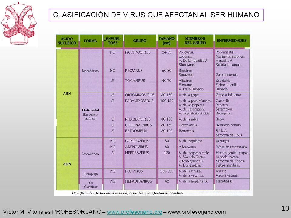 Víctor M. Vitoria es PROFESOR JANO – www.profesorjano.org – www.profesorjano.comwww.profesorjano.org 10 CLASIFICACIÓN DE VIRUS QUE AFECTAN AL SER HUMA