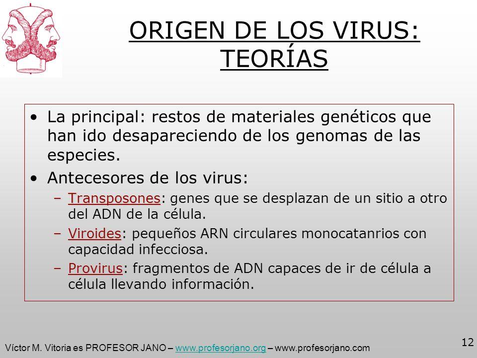 Víctor M. Vitoria es PROFESOR JANO – www.profesorjano.org – www.profesorjano.comwww.profesorjano.org 12 ORIGEN DE LOS VIRUS: TEORÍAS La principal: res