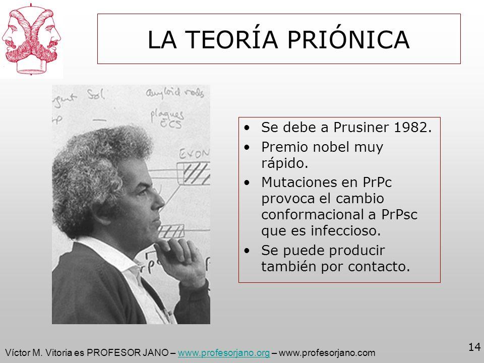 Víctor M. Vitoria es PROFESOR JANO – www.profesorjano.org – www.profesorjano.comwww.profesorjano.org 14 LA TEORÍA PRIÓNICA Se debe a Prusiner 1982. Pr
