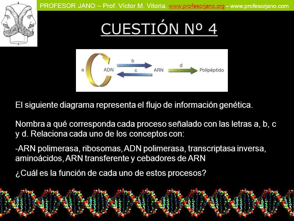 PROFESOR JANO – Prof. Víctor M. Vitoria. www.profesorjano.org – www.profesorjano.com www.profesorjano.org CUESTIÓN Nº 4 El siguiente diagrama represen