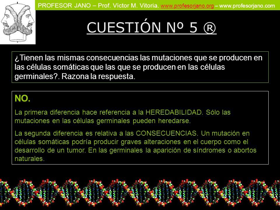 PROFESOR JANO – Prof. Víctor M. Vitoria. www.profesorjano.org – www.profesorjano.com www.profesorjano.org CUESTIÓN Nº 5 ® ¿Tienen las mismas consecuen