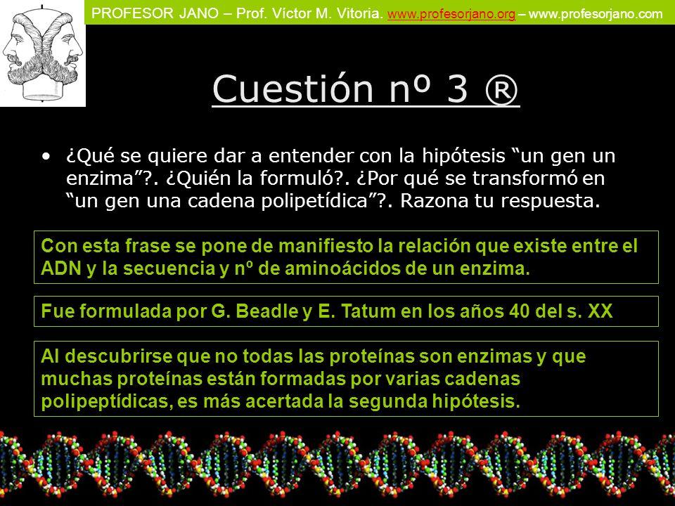 PROFESOR JANO – Prof. Víctor M. Vitoria. www.profesorjano.org – www.profesorjano.com www.profesorjano.org Cuestión nº 3 ® ¿Qué se quiere dar a entende