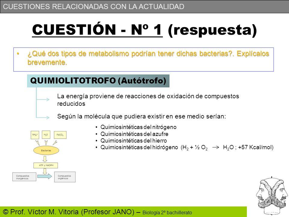 CUESTIONES RELACIONADAS CON LA ACTUALIDAD © Prof. Víctor M. Vitoria (Profesor JANO) – Biología 2º bachillerato CUESTIÓN - Nº 1 (respuesta) ¿Qué dos ti