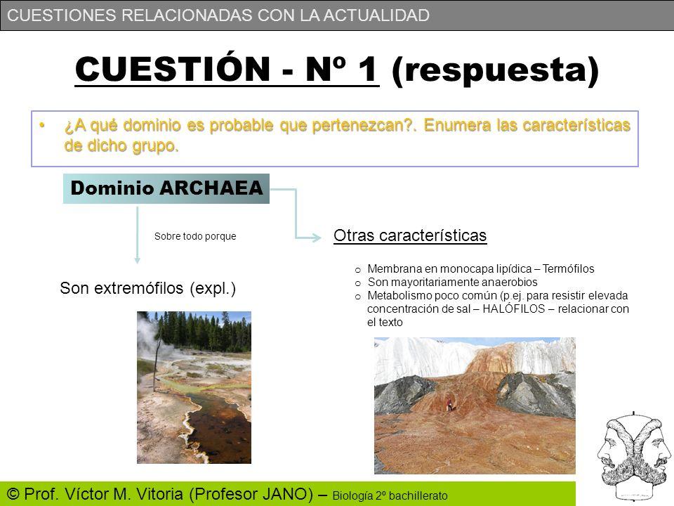 CUESTIONES RELACIONADAS CON LA ACTUALIDAD © Prof. Víctor M. Vitoria (Profesor JANO) – Biología 2º bachillerato CUESTIÓN - Nº 1 (respuesta) ¿A qué domi