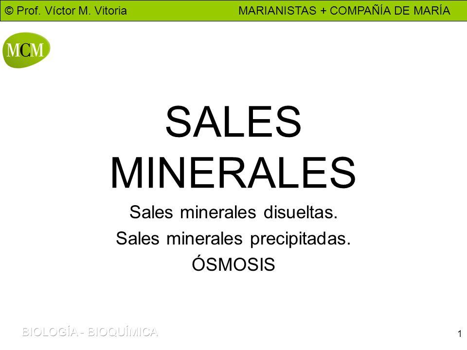 © Prof. Víctor M. Vitoria MARIANISTAS + COMPAÑÍA DE MARÍA 1 SALES MINERALES Sales minerales disueltas. Sales minerales precipitadas. ÓSMOSIS