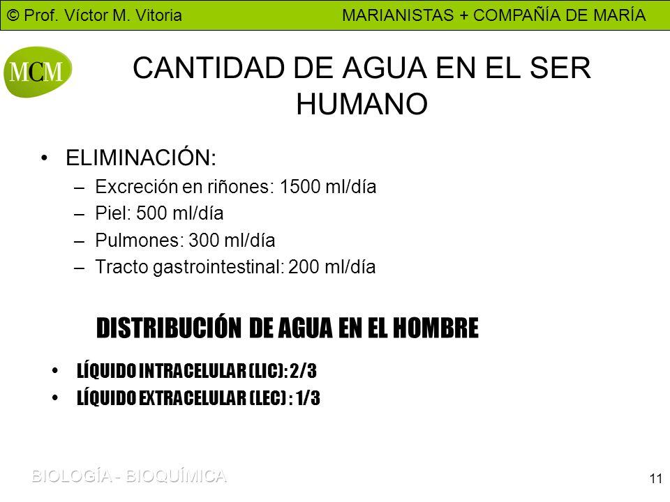 © Prof. Víctor M. Vitoria MARIANISTAS + COMPAÑÍA DE MARÍA 11 CANTIDAD DE AGUA EN EL SER HUMANO ELIMINACIÓN: –Excreción en riñones: 1500 ml/día –Piel: