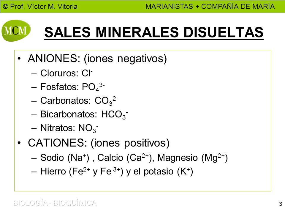 © Prof. Víctor M. Vitoria MARIANISTAS + COMPAÑÍA DE MARÍA 3 SALES MINERALES DISUELTAS ANIONES: (iones negativos) –Cloruros: Cl - –Fosfatos: PO 4 3- –C