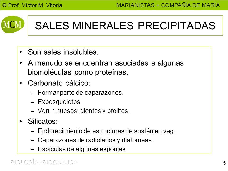 © Prof. Víctor M. Vitoria MARIANISTAS + COMPAÑÍA DE MARÍA 5 SALES MINERALES PRECIPITADAS Son sales insolubles. A menudo se encuentran asociadas a algu