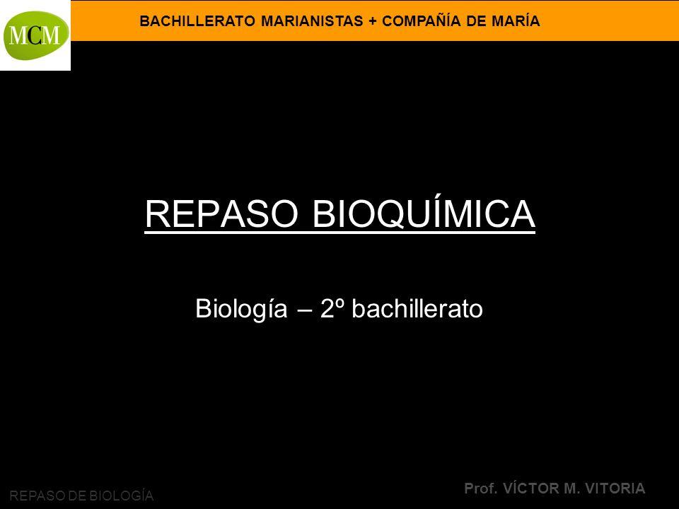 BACHILLERATO MARIANISTAS + COMPAÑÍA DE MARÍA Prof. VÍCTOR M. VITORIA REPASO DE BIOLOGÍA REPASO BIOQUÍMICA Biología – 2º bachillerato