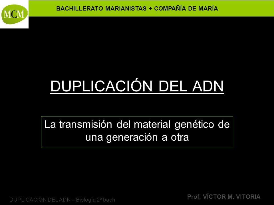 BACHILLERATO MARIANISTAS + COMPAÑÍA DE MARÍA Prof. VÍCTOR M. VITORIA DUPLICACIÓN DEL ADN – Biología 2º bach DUPLICACIÓN DEL ADN La transmisión del mat